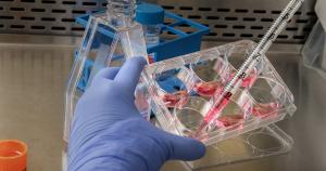 Ingénierie enzymatique - thérapie cellulaire