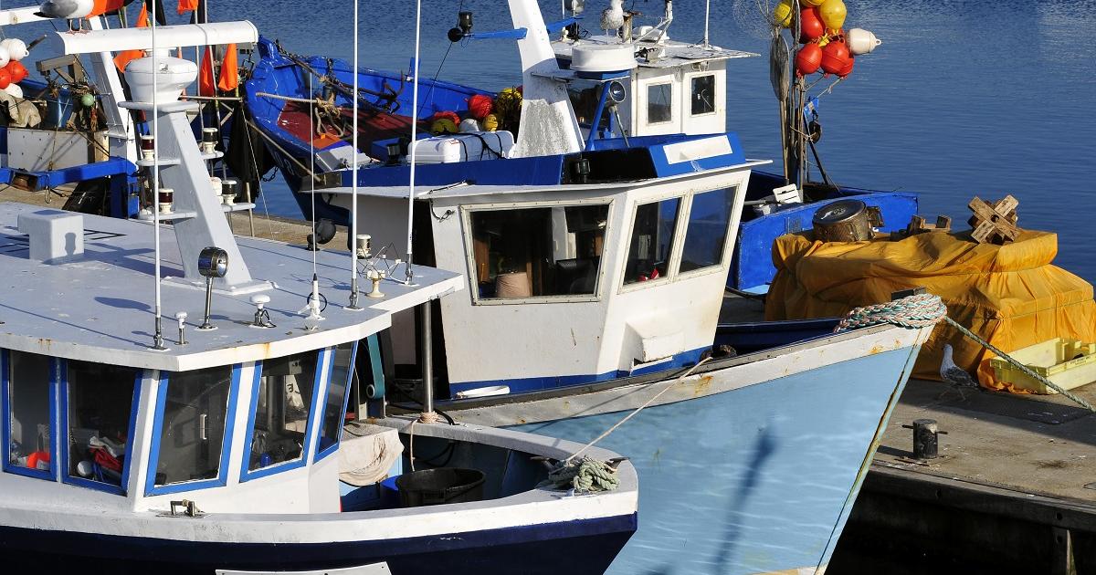 pêche - approche technico économique