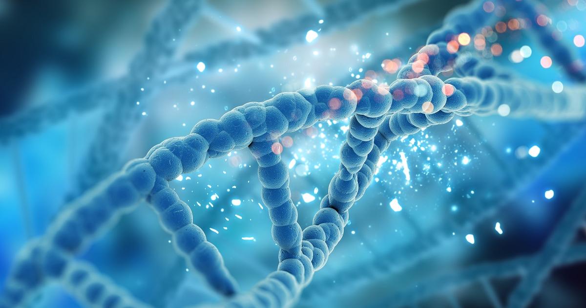 ingénierie enzymatique - enzyme ADN